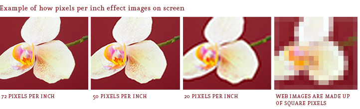 What is the Ideal Image Resolution for Print & Web? - Opus Design ...