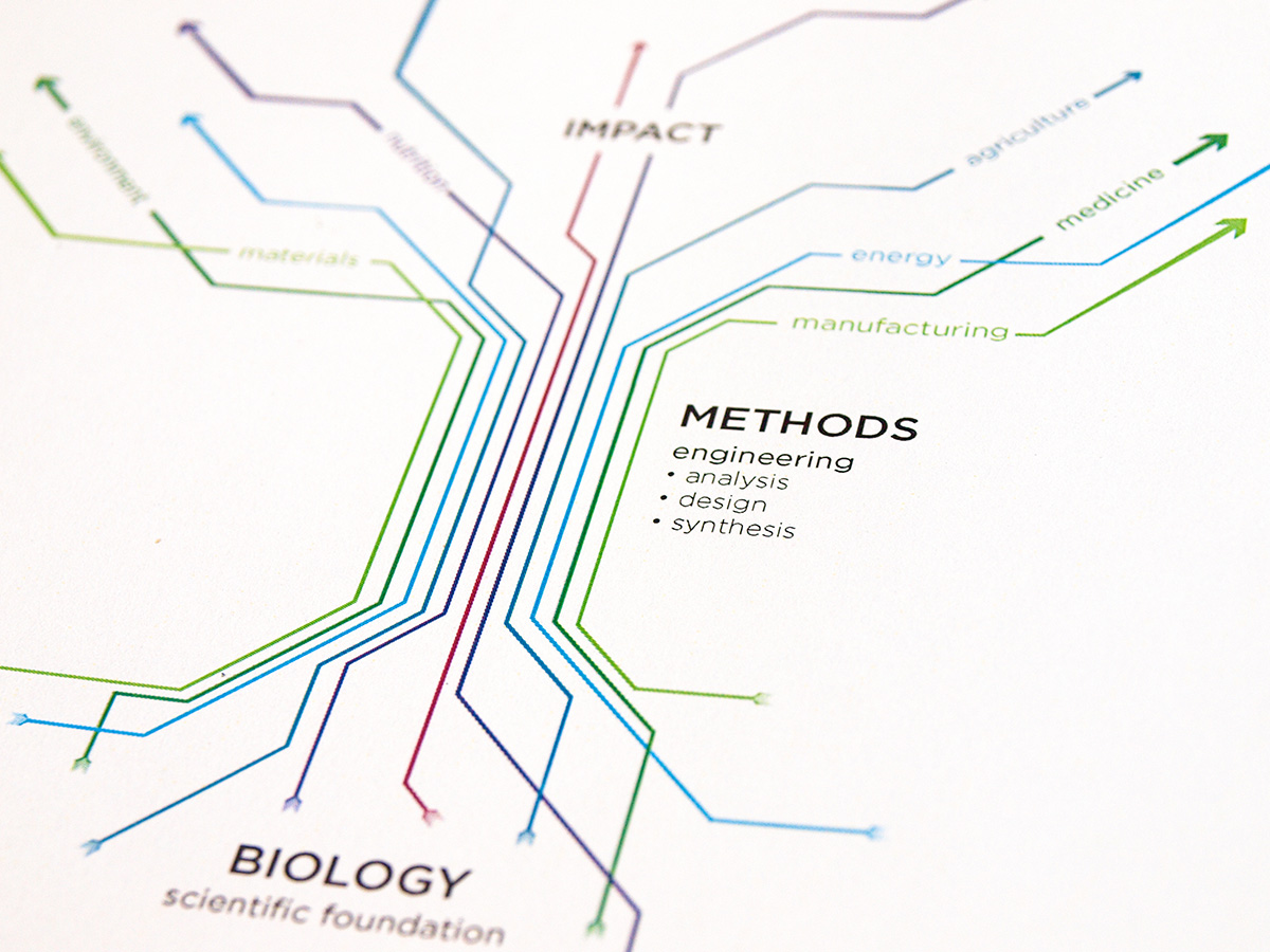 MIT Biological Engineering infographic