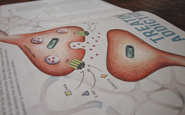NEU infographic Alumni Magazine