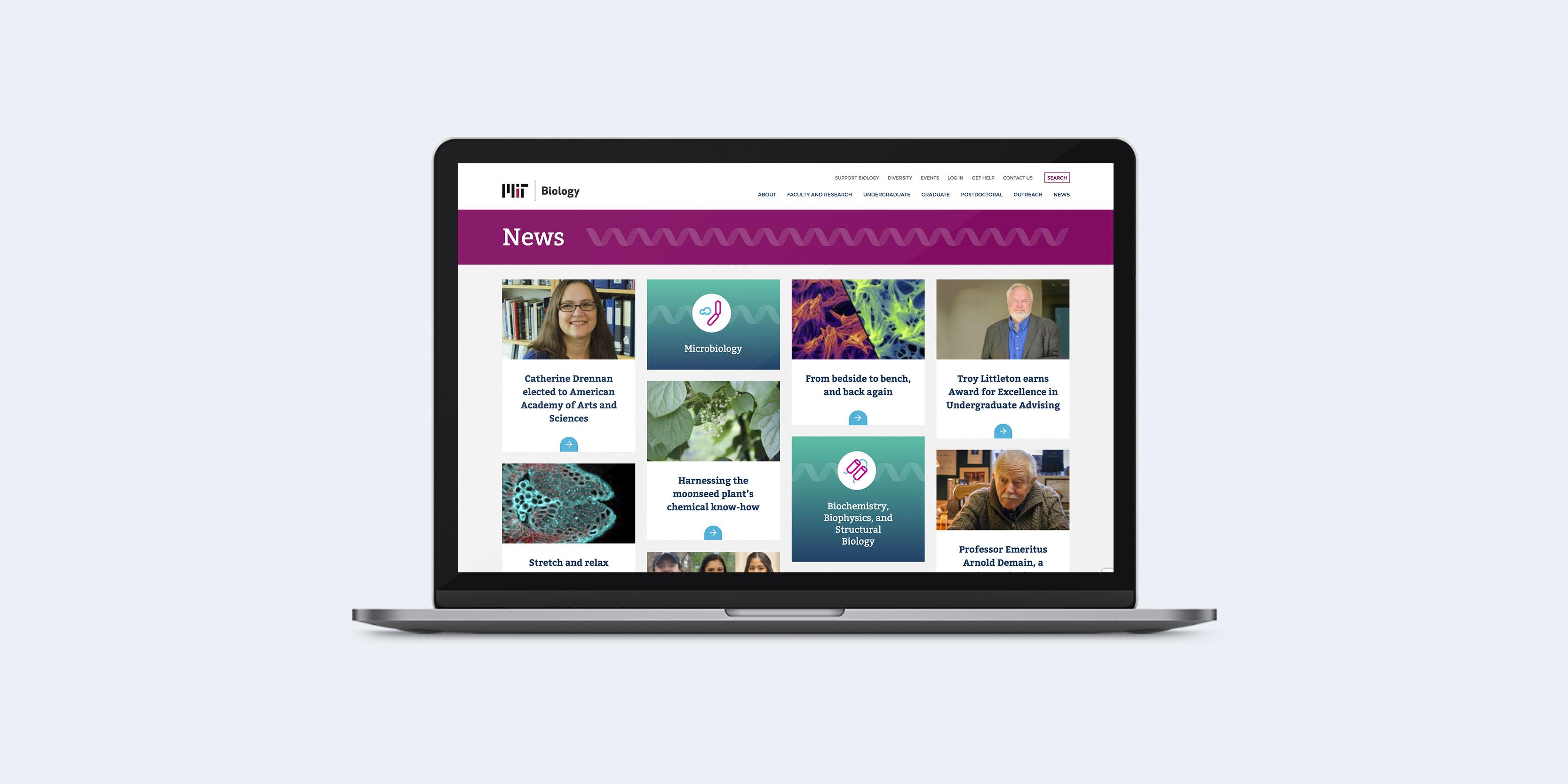 MIT Biology website design