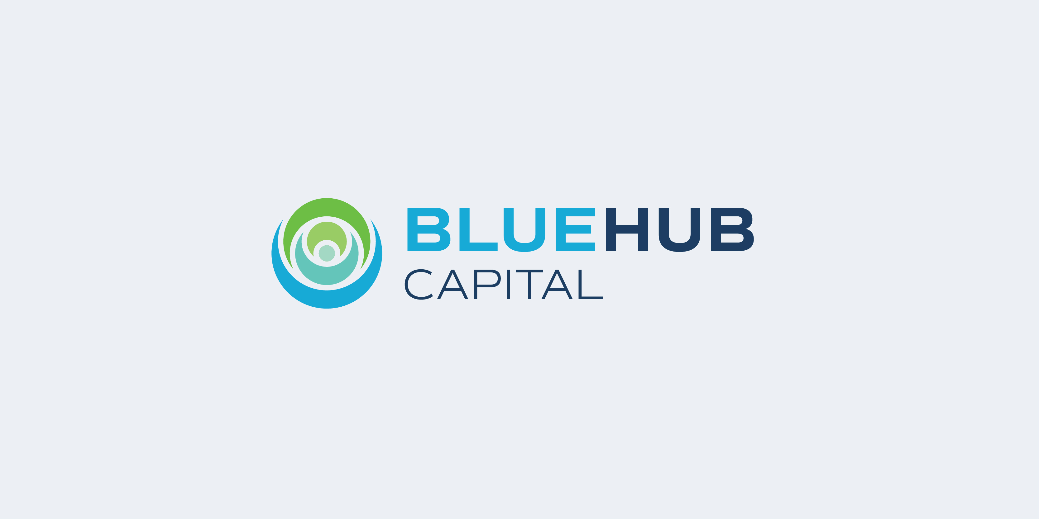 Bluehub Logo
