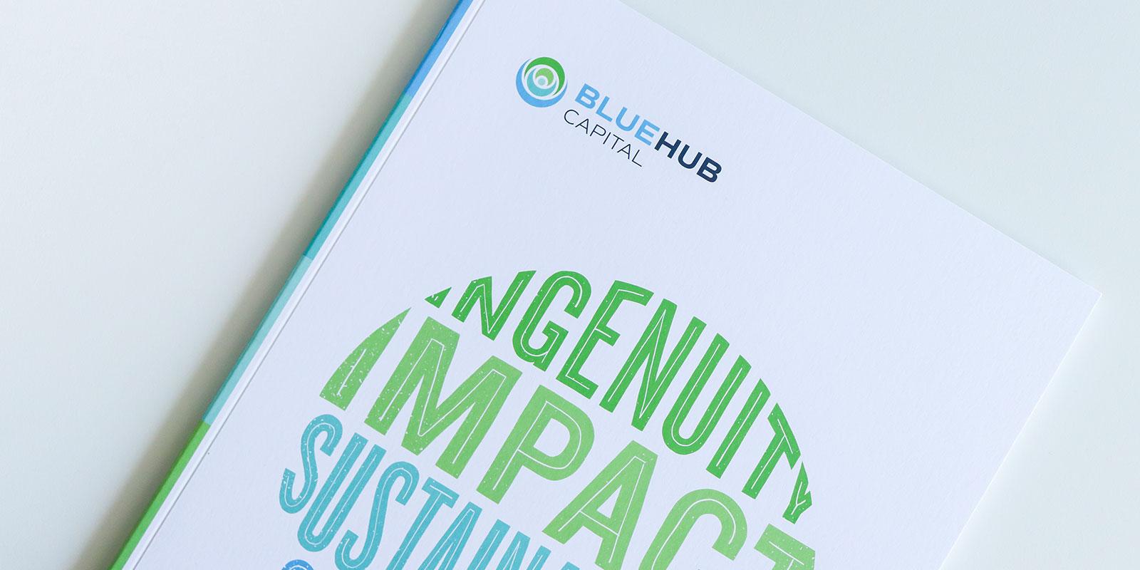 BlueHub annual report design