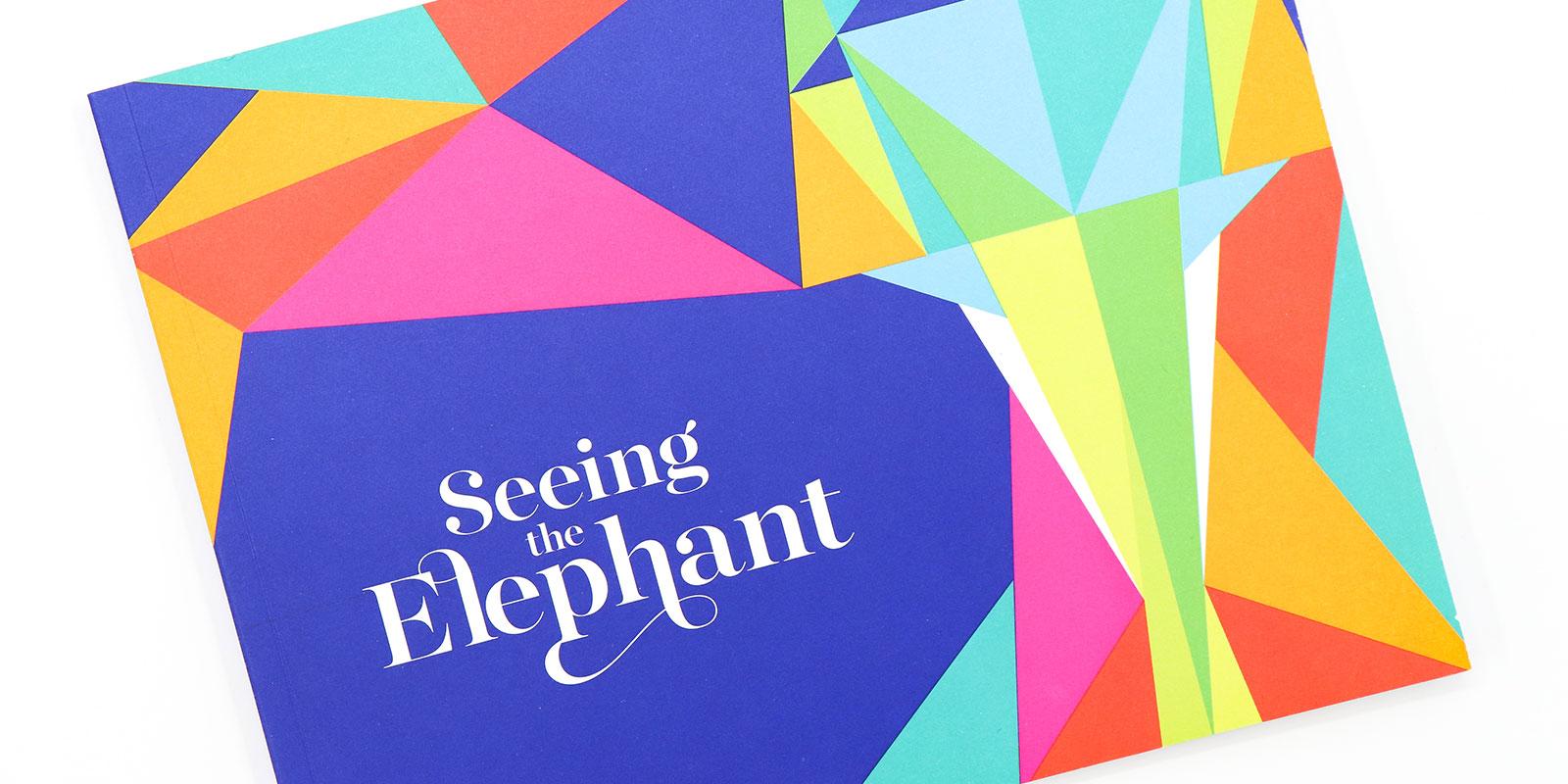MassArt Exhibition Catalog Seeing the Elephant