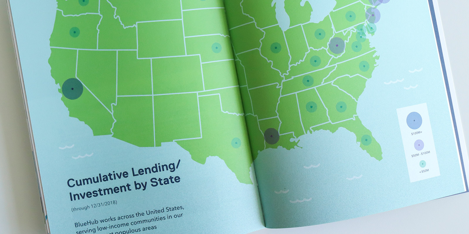 Bluehub Capital annual report design