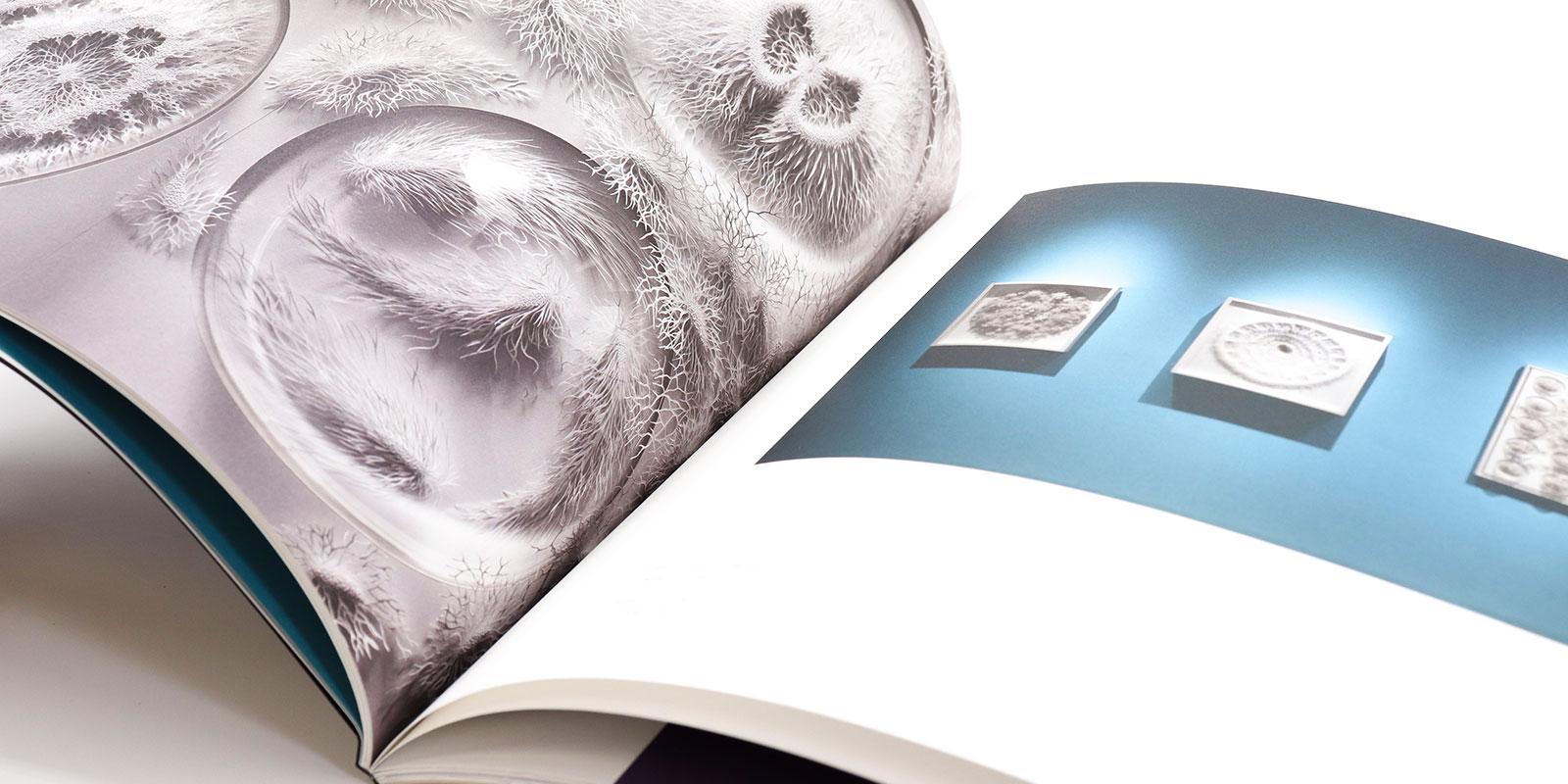 MassArt Exhibition Catalog Encircling the World - Print Design