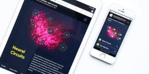 MIT McGovern Website accessible design