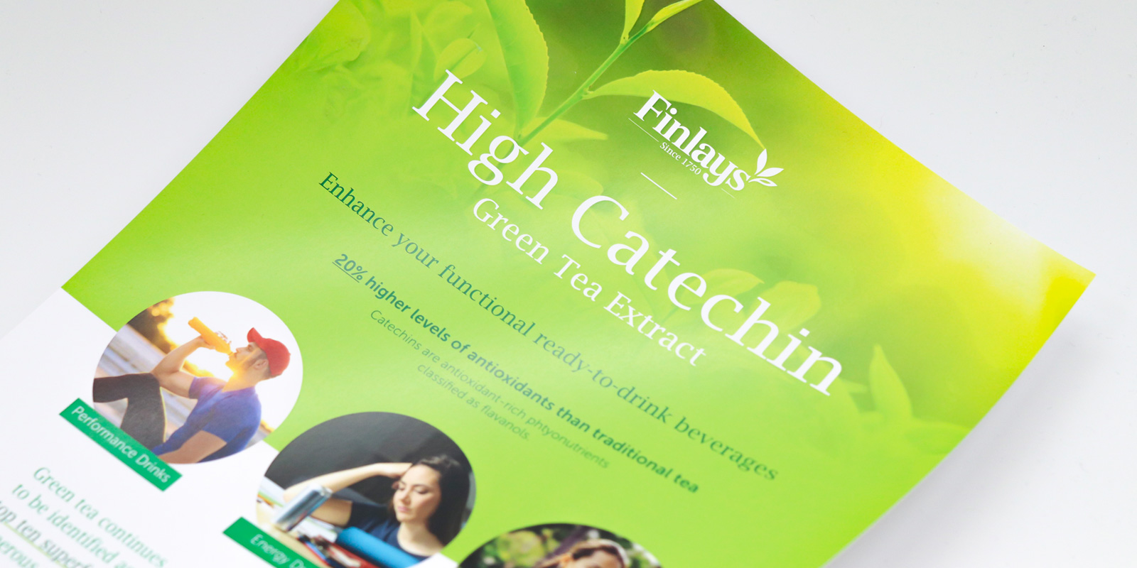 Finlays Sell Sheet Design