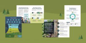 Biobased Maine graphics