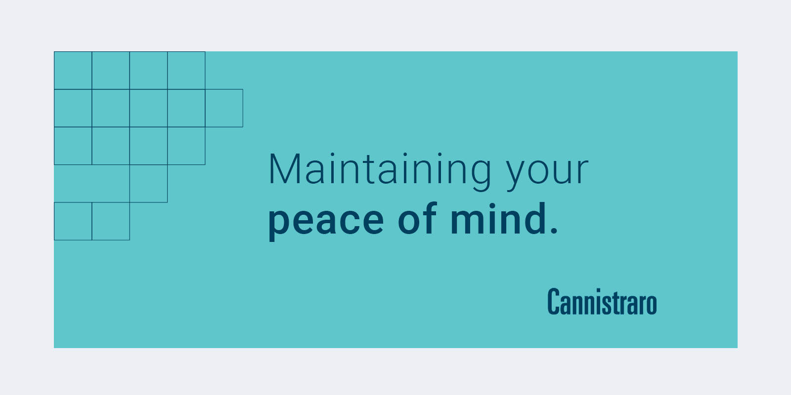 Maintaining your peace of mind. - Cannistraro